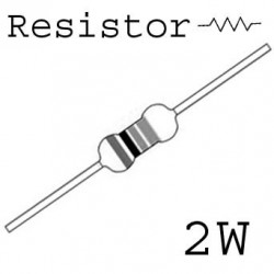 RESISTORS 2W 0.5OHM 5% 2PCS