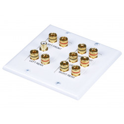 WALL PLATE SURROUND SOUND 2-GANG 5.1