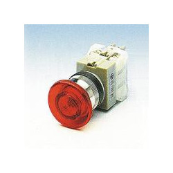 PUSH BUTTON MOMENTARY ILLUMATED 110V