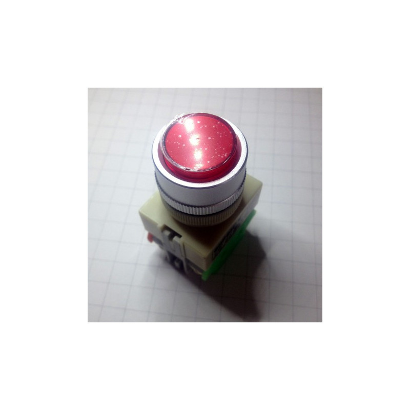 PUSH BUTTON, W/ 12V LED, MOMENTARY, Y090-RS