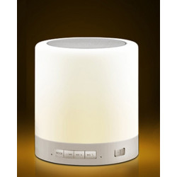 PORTABLE DESKTOP TOUCH ON OFF LAMP W/ SPEAKER