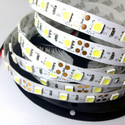 LED STRIP, 5050, 12V, W/O SILICON, COLD WHITE