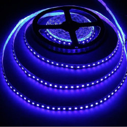 LED STRIP, 5050, 12V, W/ TUBING, BLUE, 1M