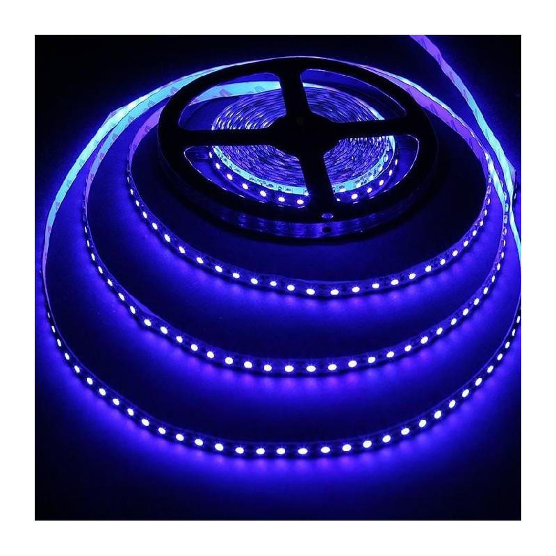 LED STRIP, 5050, 12V, W/ TUBING, BLUE, 1M