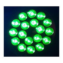 LED PAR38 12W GREEN