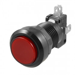 PUSH BUTTON SWITCH RED W/ MICRO SWITCH 12V LED