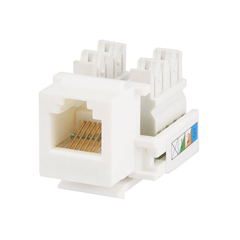 jackson modular rj12 wall plate how to connect wires