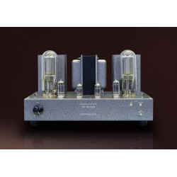 SUN VALLEY VACUUM TUBE AMPLIFIER KIT SV-S1628D, 845/211