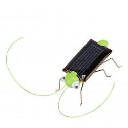 DIY SOLAR GRASSHOPPER