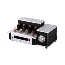YAQIN TUBE AMPLIFIER, MS-6V6