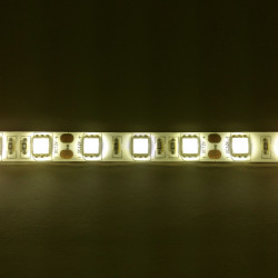 LED STRIP 5050 24V, WARM...