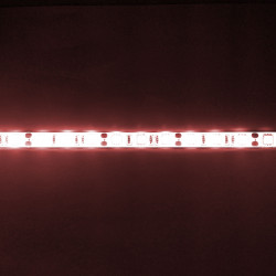 LED, STRIP, 5050, 12V, W/...