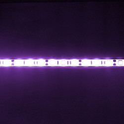 LED STRIP, 5050, UV, W/O...