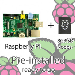 RASPBERRY PI MODEL B, 8GB SDCARD W/NOOBS INSTALLED